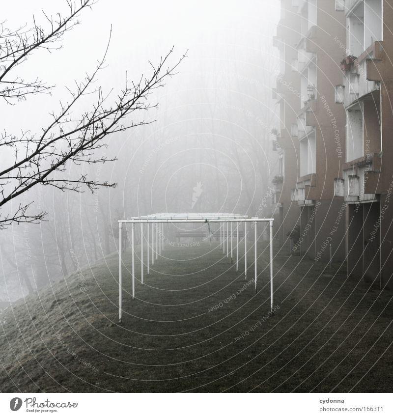 Ruhetag Farbfoto Außenaufnahme Menschenleer Textfreiraum oben Textfreiraum unten Tag Schatten Kontrast Schwache Tiefenschärfe Zentralperspektive Wohnung Natur