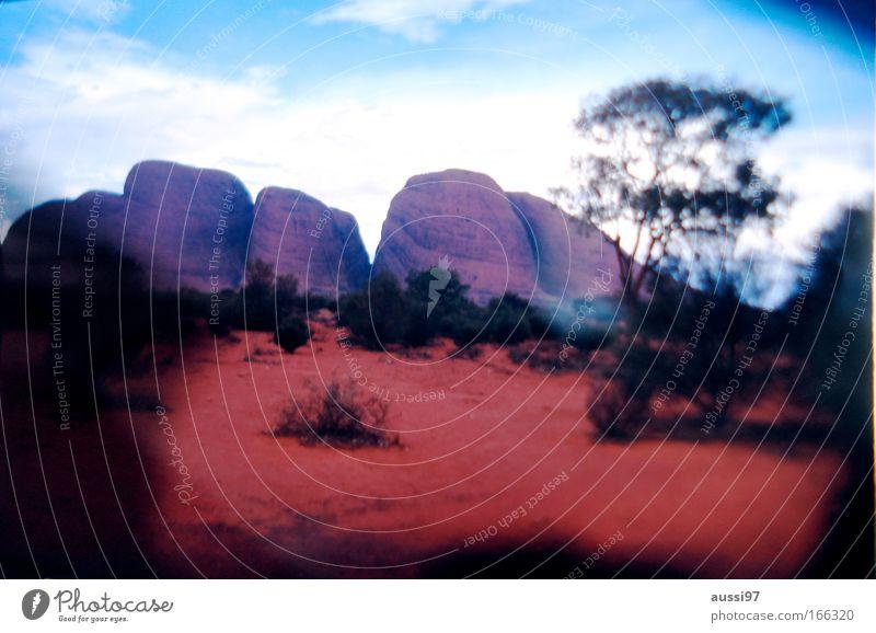 Die Olgas. Natur rot Landschaft Umwelt Felsen Erde Klima Hügel Australien Schlucht Sehenswürdigkeit Northern Territory Berge u. Gebirge Monolith