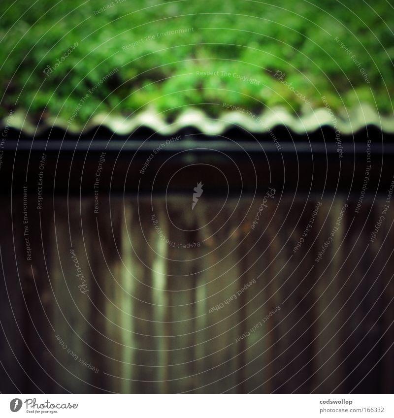 shed Wand Garten Mauer Dach Häusliches Leben Dorf Hütte Scheune Dachrinne Wasserrinne