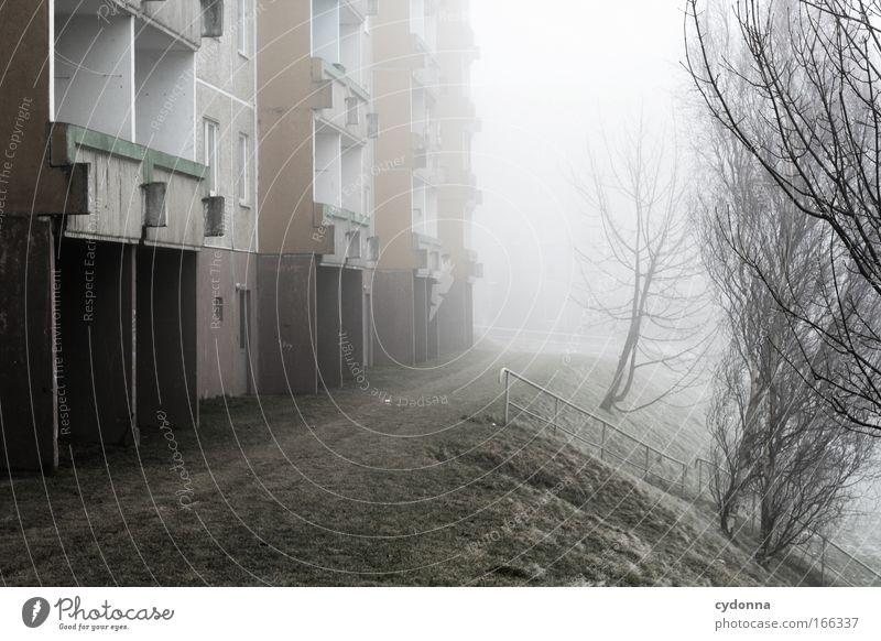Endliche Weiten Natur Baum Winter ruhig Einsamkeit Leben kalt Wiese Gefühle träumen Traurigkeit Eis Architektur Wohnung Nebel Wetter
