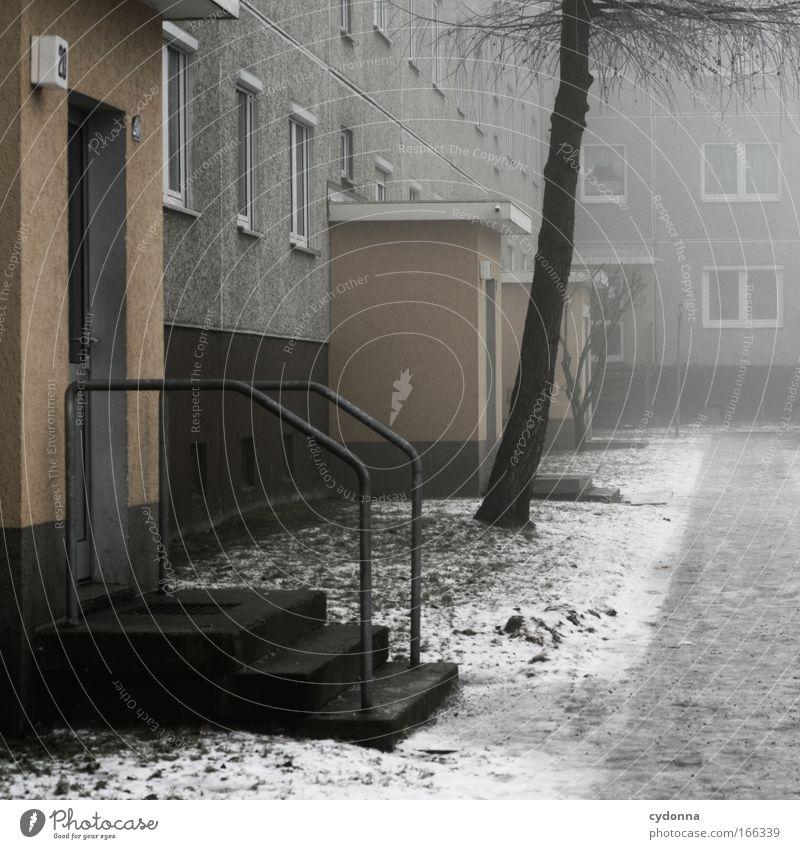 Eingänge Baum ruhig Einsamkeit Leben kalt Wiese Gefühle träumen Traurigkeit Eis Zufriedenheit Architektur Wohnung Nebel Wetter Zeit