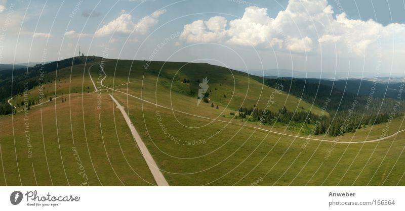 Schwarzwalddach - Feldberg vom Seebuck Natur Himmel Baum Pflanze Sommer Wolken Gras Berge u. Gebirge Wege & Pfade Gebäude Landschaft Wetter Umwelt groß Horizont