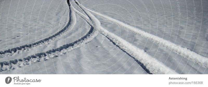 ein nettes Zusammentreffen Natur weiß Winter kalt Schnee Wege & Pfade Landschaft Eis Wetter Umwelt nass Frost Klima Spuren Verabredung Wegkreuzung