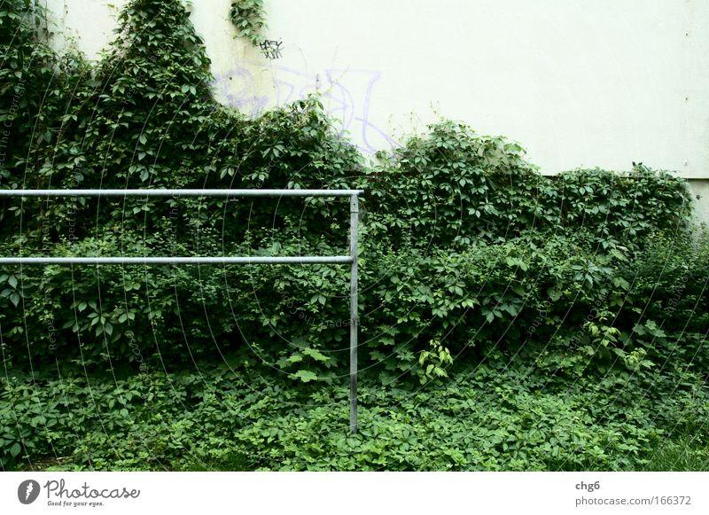 Nicht mehr benötigt weiß grün Pflanze schwarz Haus Wand grau Mauer Stimmung Zeit Beton Wandel & Veränderung Häusliches Leben Sauberkeit trashig hässlich