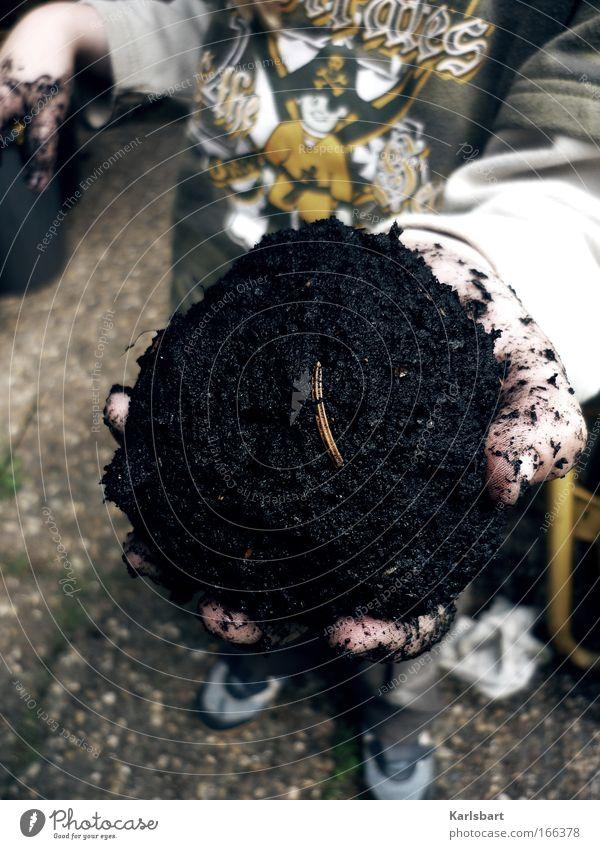 bällchen. eis. Mensch Kind Hand Spielen Erde Kindheit dreckig entdecken zeigen Bildausschnitt Anschnitt anonym Ekel kopflos unkenntlich gesichtslos