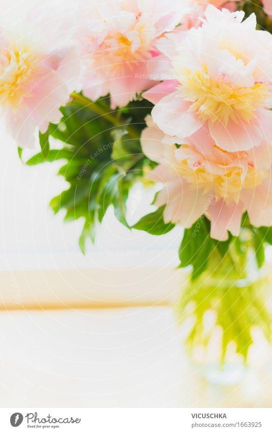 Schöne pastel Pfingstrosen in Glasvase Natur Pflanze weiß Blume Innenarchitektur Blüte feminin Stil Lifestyle Feste & Feiern rosa Design Wohnung