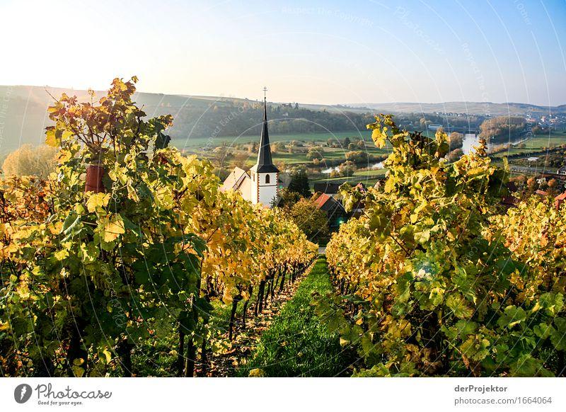 Herbstidylle in Franken Ferien & Urlaub & Reisen Tourismus Ausflug Ferne Freiheit Berge u. Gebirge wandern Umwelt Natur Landschaft Pflanze Tier Schönes Wetter