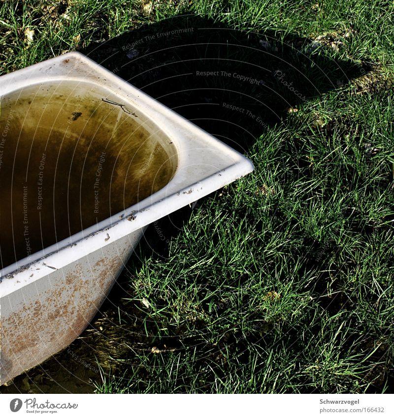 Die Freibadsaison hat begonnen! Natur Wasser Pflanze Sommer ruhig Erholung Umwelt Landschaft Wärme Gras Frühling Metall Erde Reinigen Schwimmbad Sauberkeit