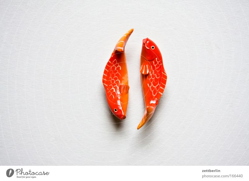 Fische Liebe Holz Zusammensein Tierpaar Dekoration & Verzierung paarweise Fisch Fisch Romantik Schmuck Textfreiraum Astrologie Partnerschaft Zierde Goldfisch Esoterik