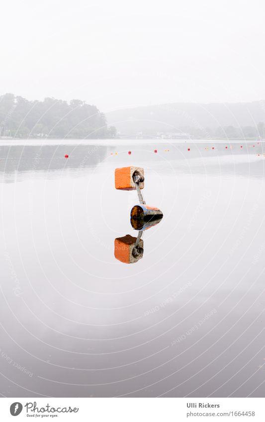 Spiegelung Rudern Natur Sommer Wald Hügel See Fluss Stein Schwimmen & Baden Im Wasser treiben orange Farbfoto Außenaufnahme Textfreiraum oben Textfreiraum unten