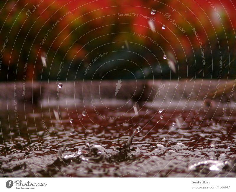 Wasserspiel Wassertropfen Tropfen braun rot Traurigkeit ästhetisch Bewegung einzigartig rein Oberflächenstruktur Farbfoto Außenaufnahme Detailaufnahme