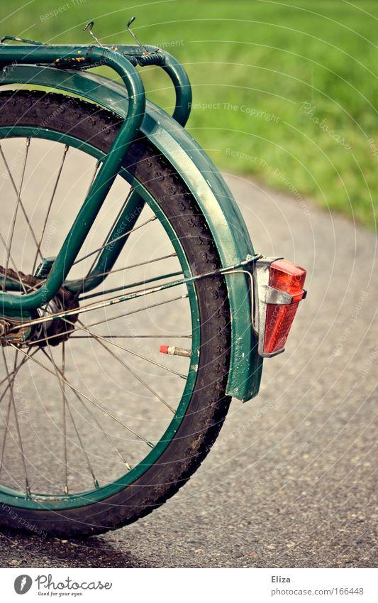 Fahrradromantik Umwelt Herbst Regen nass Asphalt Straße Fußweg Wiese Rücklicht retro grau Reifen grün Gepäckträger Pause stoppen Detailaufnahme Natur