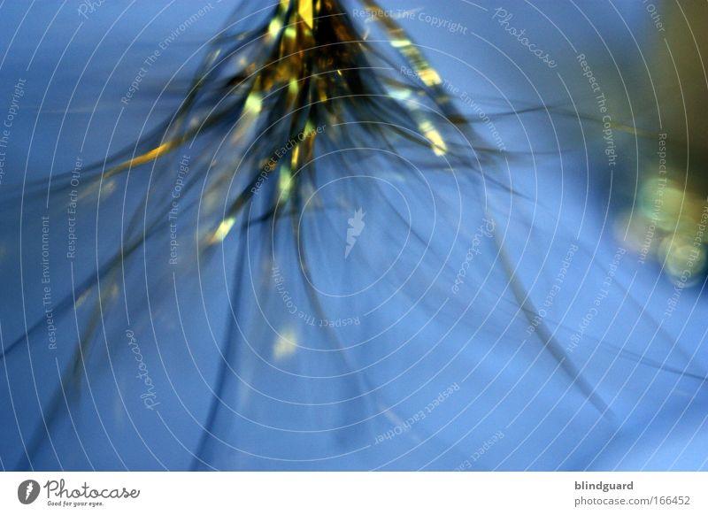 Glitter In Motion blau Freude gelb kalt Spielen Gefühle Bewegung Metall Feste & Feiern glänzend einfach Dekoration & Verzierung Kitsch Kunststoff Restaurant drehen
