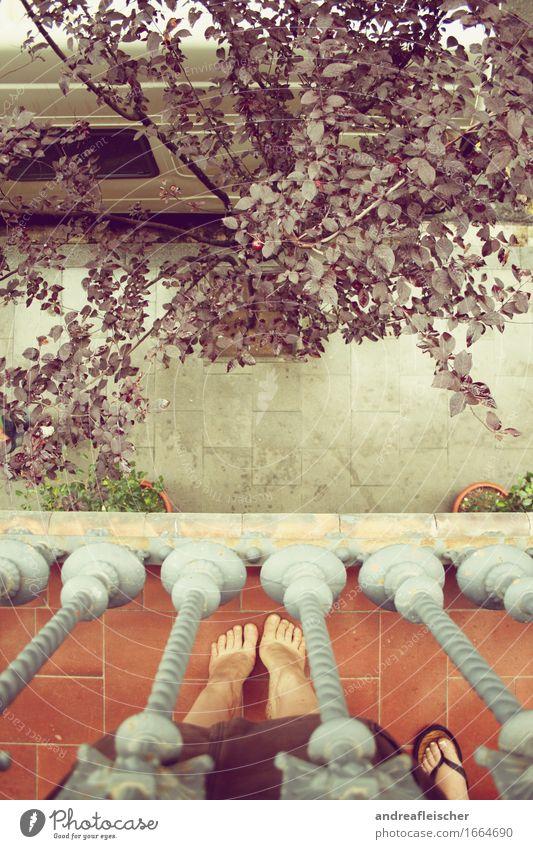 Barcelona feminin Junge Frau Jugendliche Freundschaft 2 Mensch 18-30 Jahre Erwachsene beweglich Balkon Bürgersteig Baum Fuß Zehenspitze Flipflops Geländer