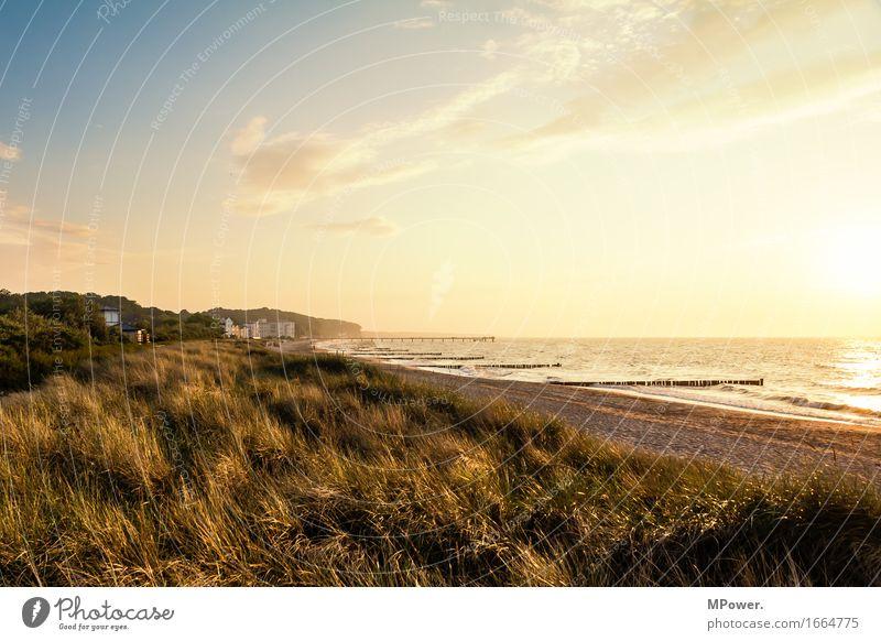 heiligendamm Umwelt Natur Landschaft Schönes Wetter Wärme Wiese Hügel Wellen Küste Strand Bucht Ostsee Meer hell Düne Buhne Ferien & Urlaub & Reisen Erholung
