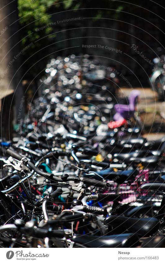 Bikes Stadt Fahrrad natürlich authentisch fahren Schönes Wetter trocken