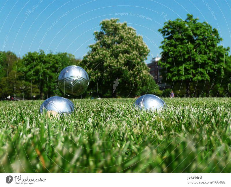A-Park Freizeit & Hobby Spielen Garten Boule Himmel Wolkenloser Himmel Sonnenlicht Schönes Wetter Baum Gras Wiese Metall Kugel Bewegung Erholung fliegen werfen