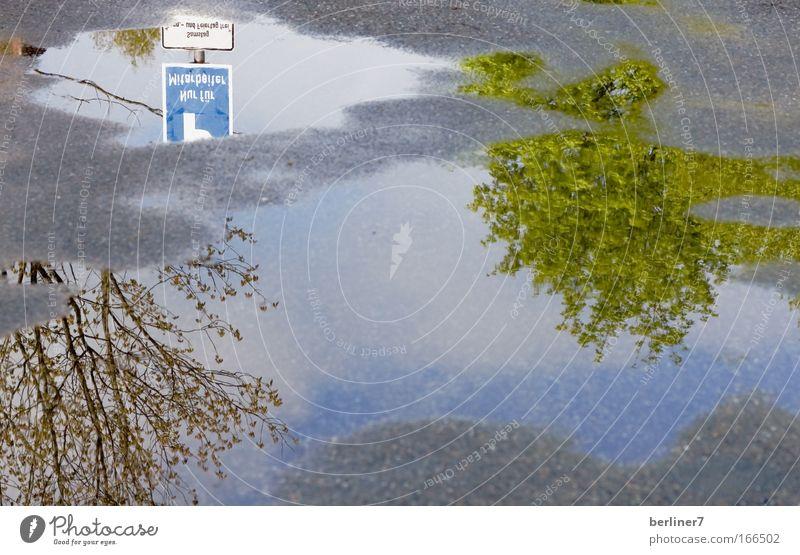 Frühling in der Pfütze Natur Wasser grün blau Pflanze grau Wege & Pfade Park Regen Beton Pfütze Spiegelbild Verkehrsschild Verkehrszeichen