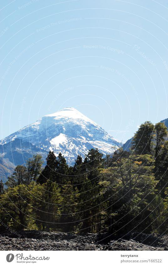 Vulano Lanin Patagonien Argentinien Farbfoto Außenaufnahme Menschenleer Morgen Starke Tiefenschärfe Totale Natur Landschaft Himmel Wolkenloser Himmel Herbst