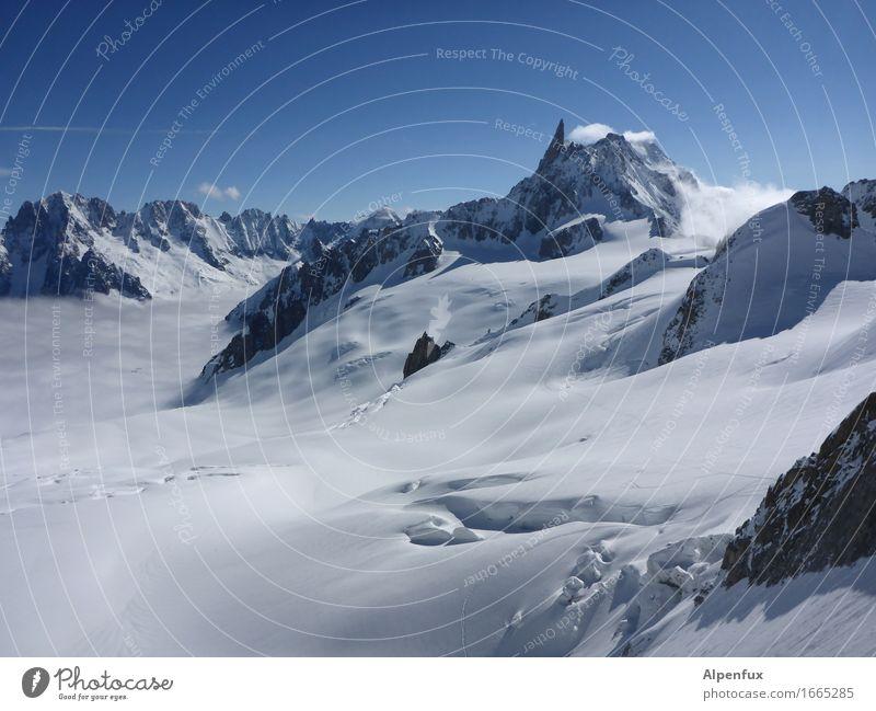 Glacier du Geant Einsamkeit Berge u. Gebirge kalt Schnee träumen Zufriedenheit Eis Vergänglichkeit Abenteuer Gipfel Frost Alpen Schneebedeckte Gipfel Höhenangst