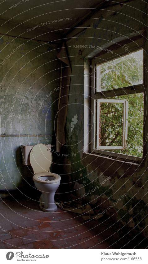 Zimmer mit Ausblick Toilette Fenster Bad alt verfallen baufällig schäbig Verfall Landflucht Haus Ruine Farbe trist Verzweiflung Leerstand Porzellan Brille