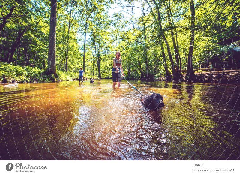Gassi im Sommer Mensch Hund Natur Jugendliche blau grün Junge Frau Wasser Sonne Landschaft Tier Wald Tierjunges Umwelt gelb