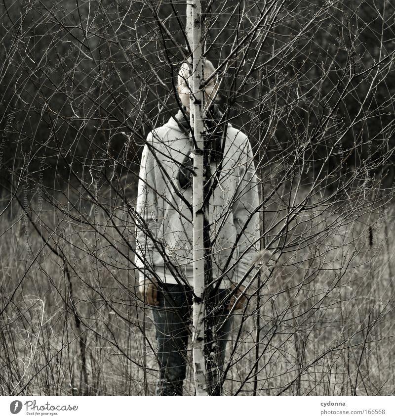 Tarnung Mensch Frau Natur schön Baum Erwachsene Umwelt Leben Freiheit Design ästhetisch Wandel & Veränderung Kommunizieren Kreativität geheimnisvoll entdecken