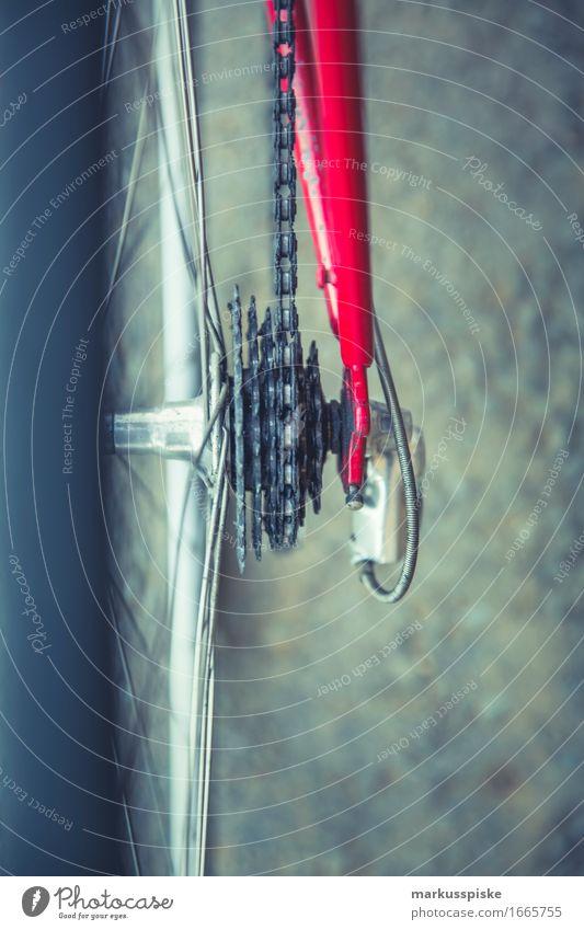 vintage rennrad zahnkranz Sommer Straße Sport Stil Lifestyle Gesundheit Design Verkehr Freizeit & Hobby elegant Fahrrad Fahrradfahren Fitness Fahrradtour