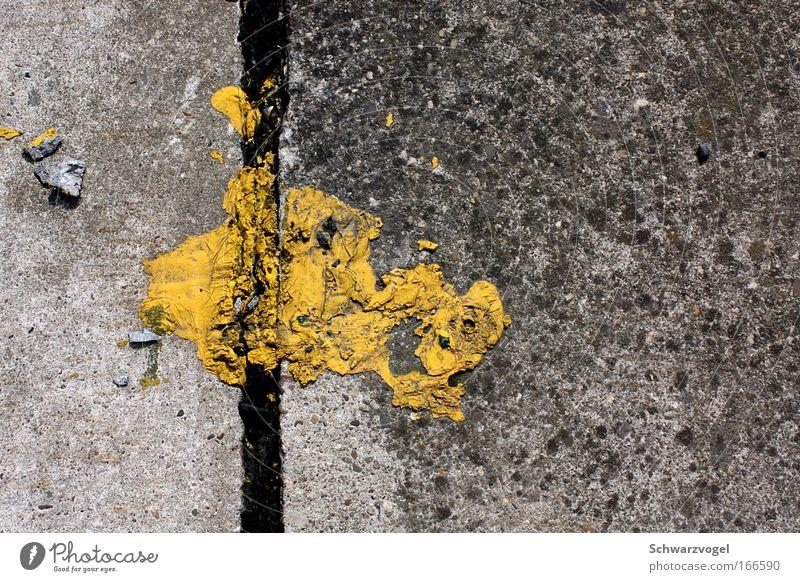 Asphaltmonster (Der Gilb) Tier gelb Farbe grau Stein träumen Vogel Beton fliegen gefährlich Wildtier Tiergesicht Kreativität Jagd skurril