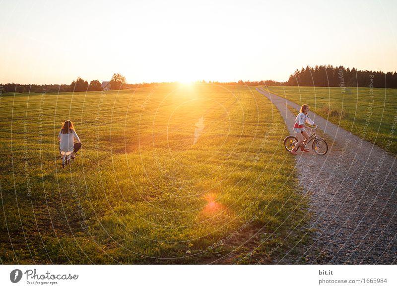 wo sich Fuchs und Has... Ferien & Urlaub & Reisen Freude Mädchen Wiese Herbst feminin Familie & Verwandtschaft Glück Freundschaft Freizeit & Hobby Feld Kindheit