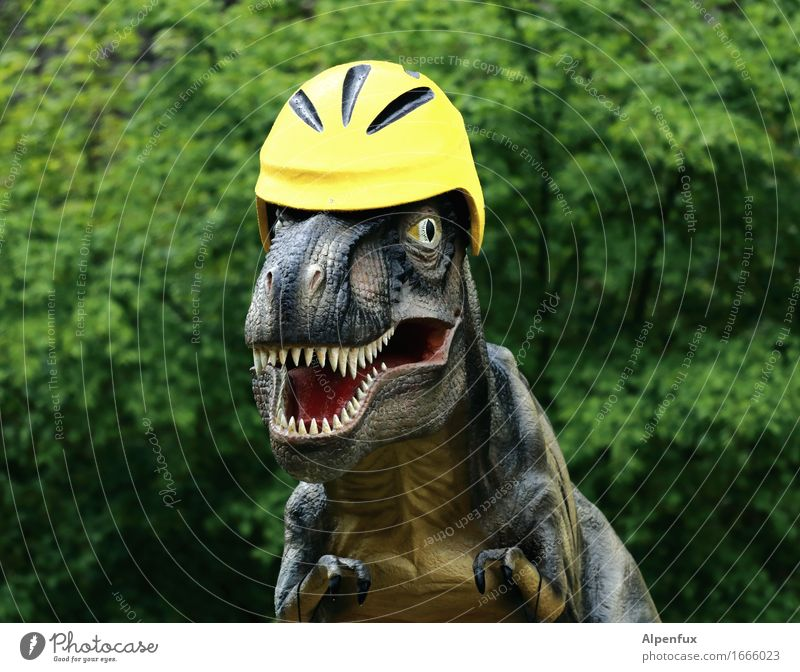 Nur mit Helm ! Urwald Tier Tyrannosaurus Rex 1 beobachten Fressen Aggression bedrohlich lustig Sicherheit Angst Abenteuer Fahradhelm Gebiss T-Rex Dinosaurier