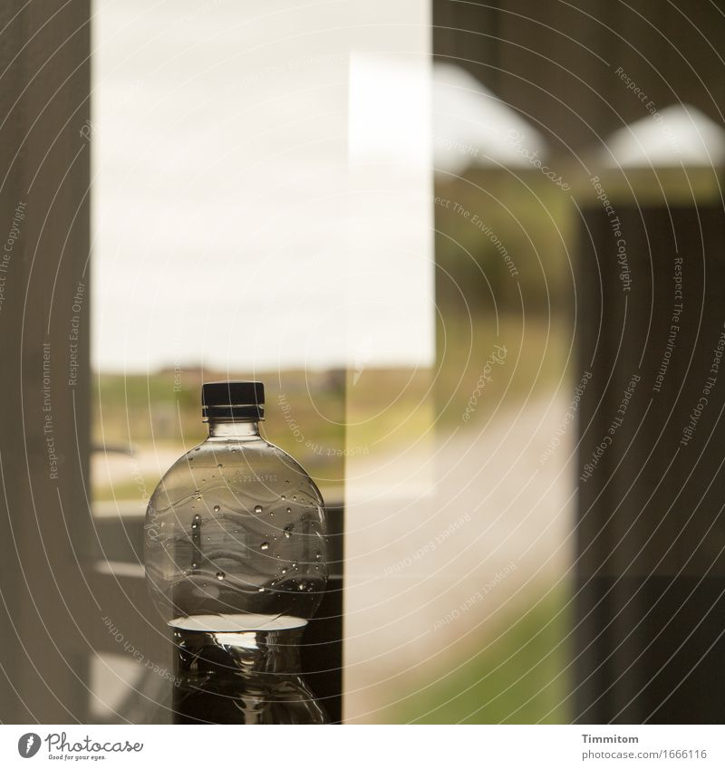 Wasser thut's freilich. Getränk Mineralwasser Ferien & Urlaub & Reisen Natur Dänemark Ferienhaus Fenster einfach grün Erholung Pfandflasche Doppelbelichtung