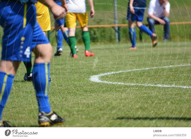 Die Gräser, die die Welt bedeuten III Mensch Jugendliche Mann blau grün Junger Mann Erwachsene gelb Sport Beine Menschengruppe maskulin Freizeit & Hobby gold