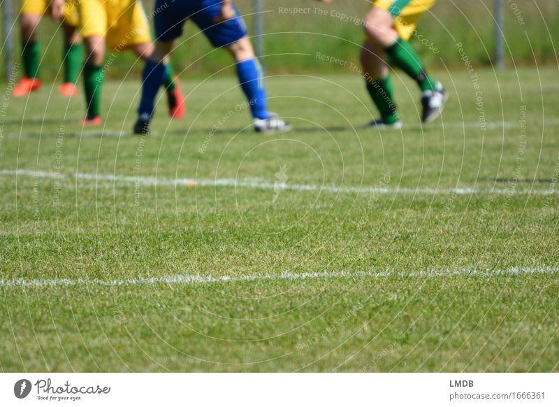 Die Gräser, die die Welt bedeuten II Mensch grün Sport Beine Menschengruppe Fuß maskulin Freizeit & Hobby laufen Fußball Sportmannschaft Sportrasen