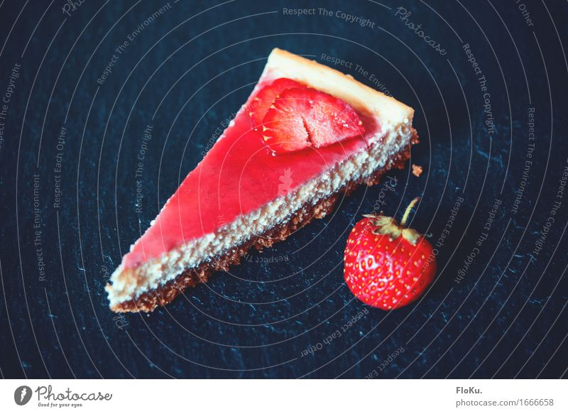 Strawberry-Cheesecake Lebensmittel Teigwaren Backwaren Kuchen Dessert Süßwaren Ernährung Kaffeetrinken Vegetarische Ernährung frisch schön lecker süß blau rot