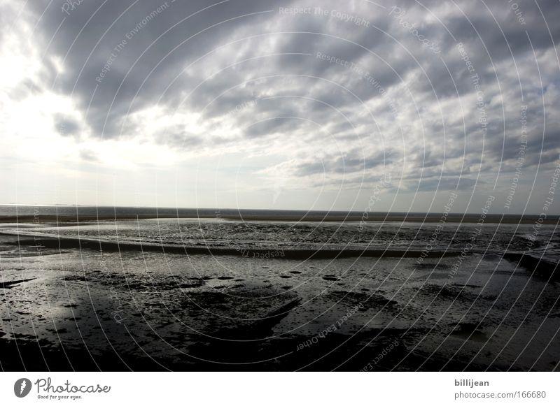 Nordseehorizont Farbfoto Gedeckte Farben Außenaufnahme Menschenleer Textfreiraum Mitte Morgen Kontrast Weitwinkel Umwelt Natur Landschaft Sand Luft Wasser
