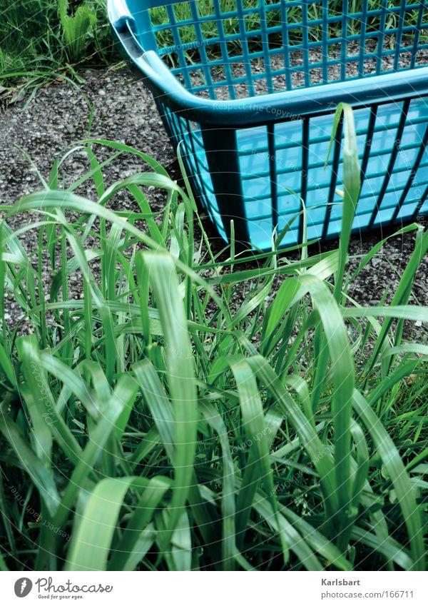 das stehen des korbes während des vorgangs des hängens. Natur blau grün Sommer Blatt Wiese Umwelt Garten Gras Stein Wetter Arbeit & Erwerbstätigkeit Beton Energiewirtschaft Häusliches Leben Sauberkeit