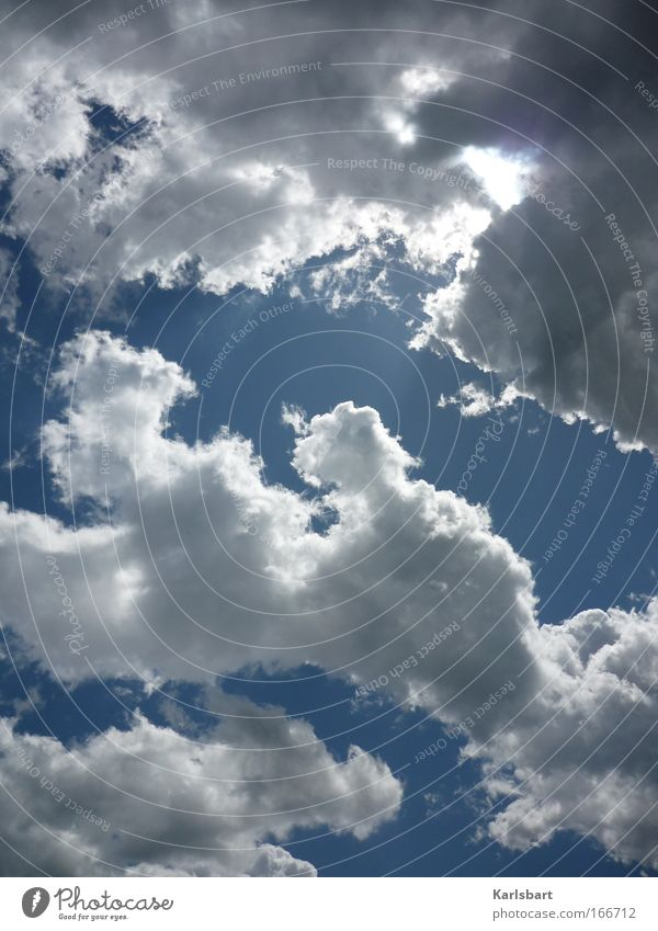 prettying up. the world. Himmel Natur blau Wasser weiß Sonne Sommer Wolken Erholung Umwelt Bewegung Glück Luft Wetter Zufriedenheit Wind