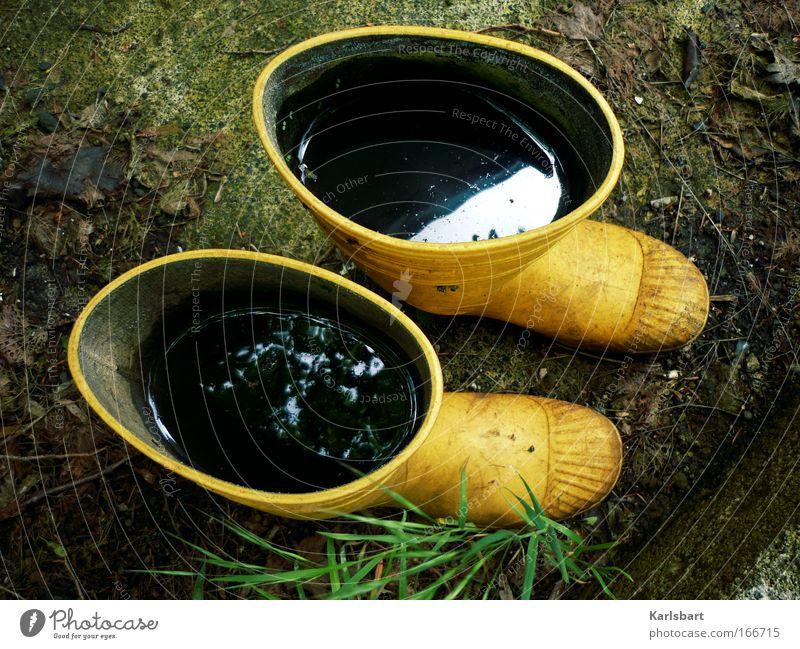 land in sicht. nass Regenwasser Pfütze voll Wasser Gummistiefel Objektfotografie Wasserspiegelung