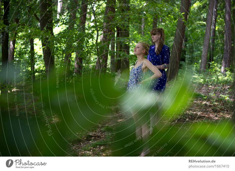 im wald Mensch feminin Junge Frau Jugendliche 2 18-30 Jahre Erwachsene Umwelt Natur Pflanze Baum Blatt Wald Kleid beobachten Blick stehen blond trendy natürlich