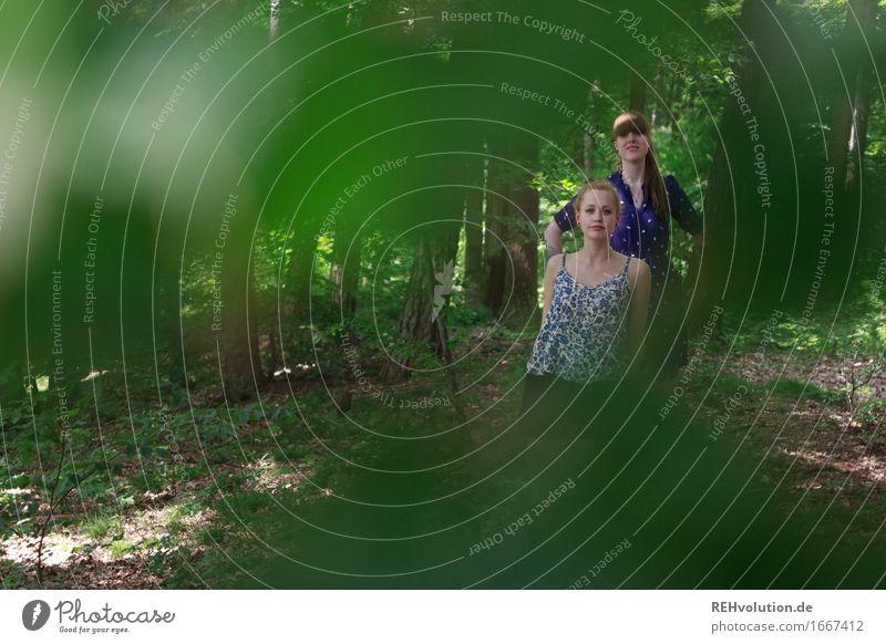 im wald Mensch feminin Junge Frau Jugendliche Erwachsene 2 18-30 Jahre Umwelt Natur Pflanze Baum Blatt Wald Kleid brünett blond langhaarig stehen