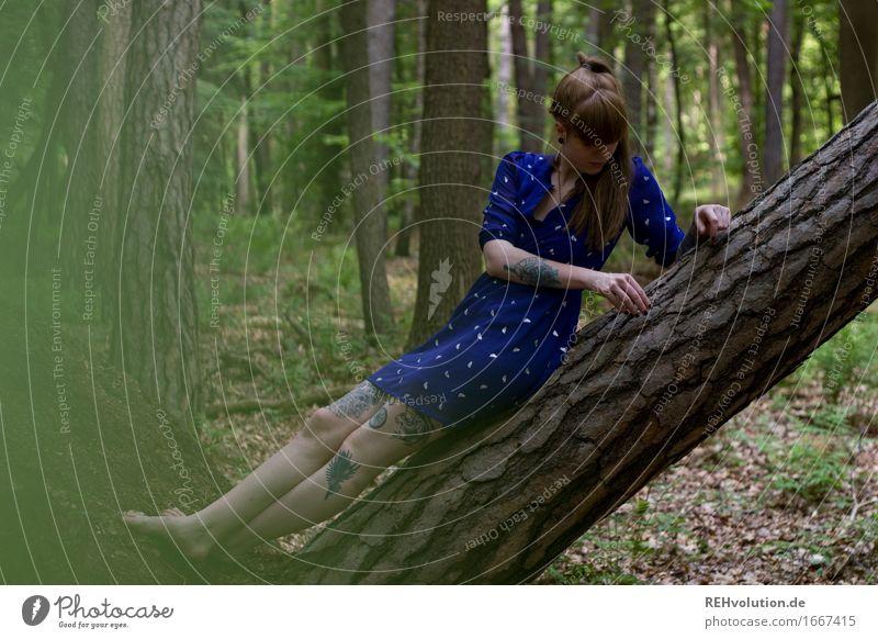 Carina im Wald Mensch feminin Junge Frau Jugendliche Erwachsene 1 18-30 Jahre Umwelt Natur Pflanze Baum Mode Kleid Tattoo brünett langhaarig Pony Zopf sitzen