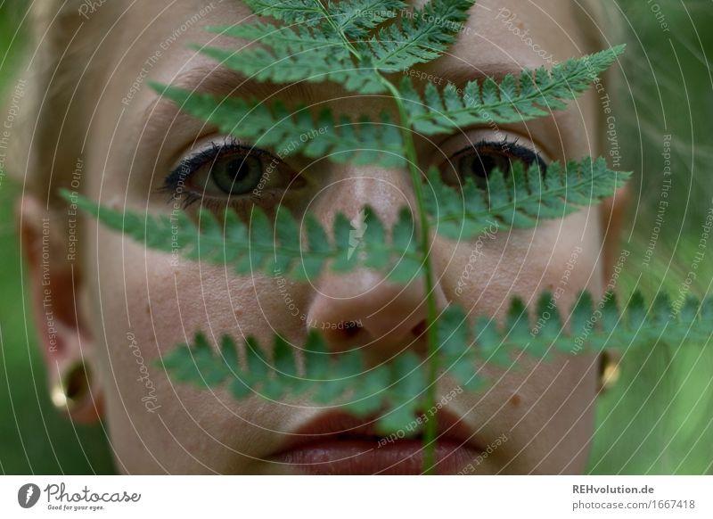 alexa im wald Mensch feminin Junge Frau Jugendliche Erwachsene Gesicht 1 18-30 Jahre Umwelt Natur Pflanze Farn Blatt Grünpflanze Wald Ohrringe blond Blick schön