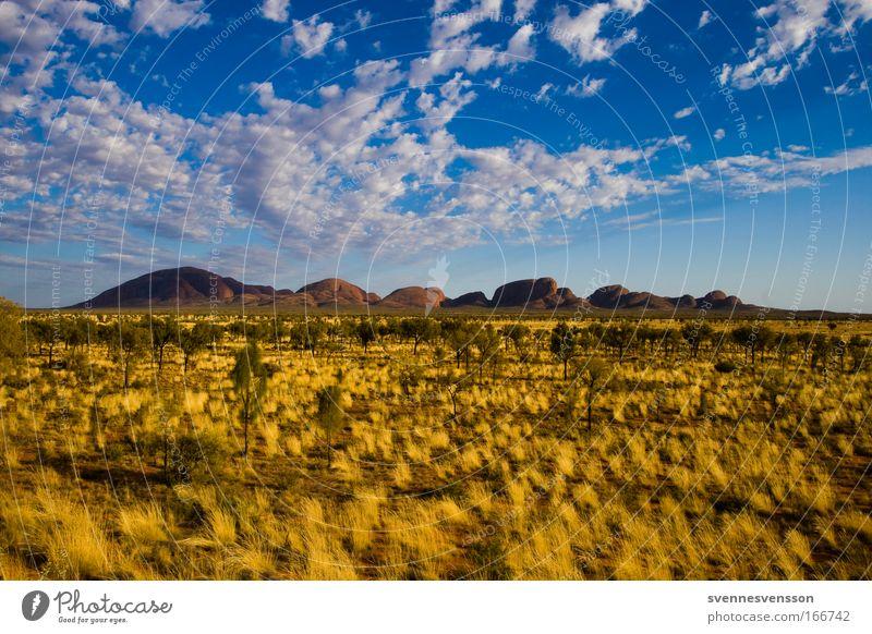 Kata Tjuta Natur Himmel Baum Pflanze Ferien & Urlaub & Reisen Wolken Einsamkeit Gras Berge u. Gebirge Landschaft Umwelt groß Felsen Tourismus Unendlichkeit