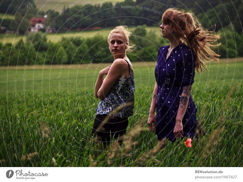 vor dem unwetter Mensch Frau Natur Jugendliche grün Junge Frau Landschaft dunkel 18-30 Jahre Erwachsene Umwelt feminin außergewöhnlich Haare & Frisuren
