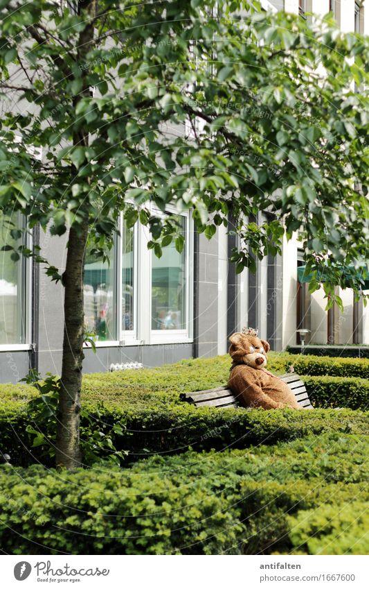 Probier's mal mit Gemütlichkeit Mensch Natur Sommer grün Baum Tier Berlin Lifestyle Garten maskulin Park Körper Wildtier sitzen Sträucher Bekleidung