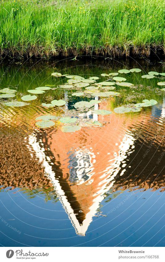Wasserhäuschen Farbfoto mehrfarbig Außenaufnahme Tag Natur Schönes Wetter Pflanze Gras Flussufer See Heimweh