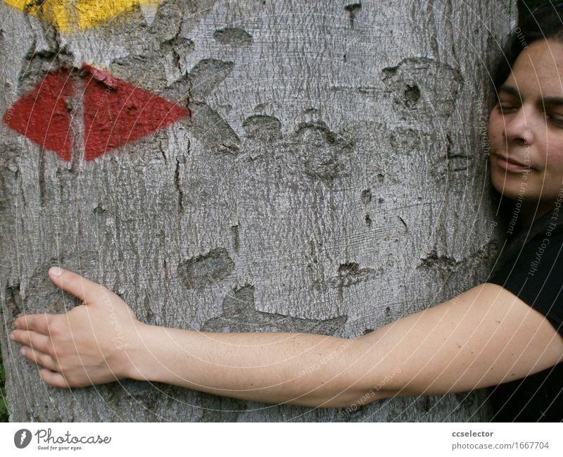 Mein Freund der Baum Umwelt Natur Wald Zeichen Pfeil Stimmung achtsam Partnerschaft Frieden Zufriedenheit Nachhaltigkeit Verträumtheit harmonisch