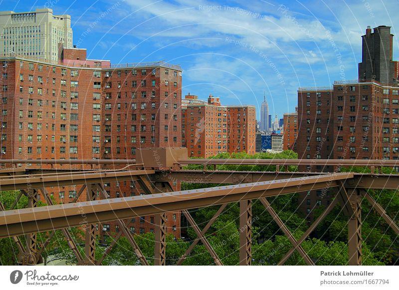 Durchblick Tourismus Sightseeing Städtereise Sommer Häusliches Leben Wohnung Haus Baustelle Umwelt Himmel Wolken Schönes Wetter Baum New York City Manhattan USA