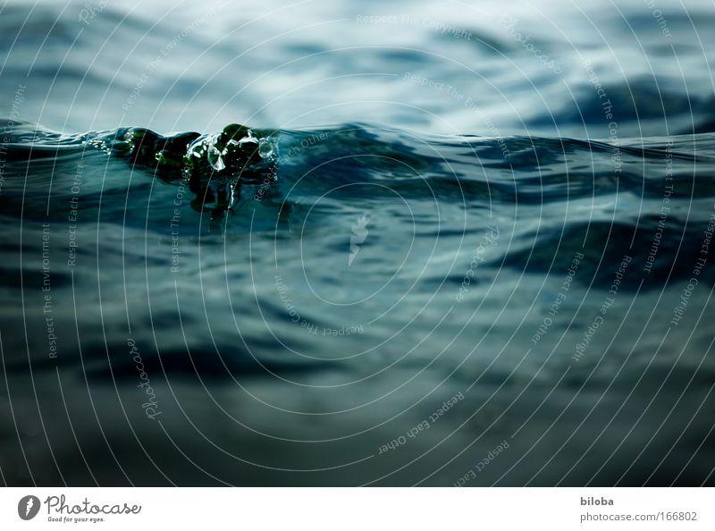 Frisches Wasser Natur Wasser grün blau schön Sommer Einsamkeit Ferne Erholung Freiheit Umwelt grau Wellen Kraft ästhetisch Klima